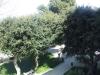 Vista sulla Villa Cavallotti